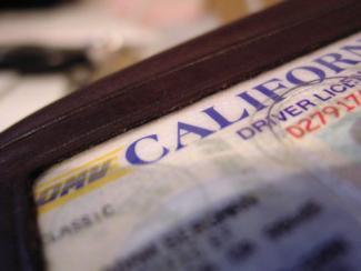 California Driver's License