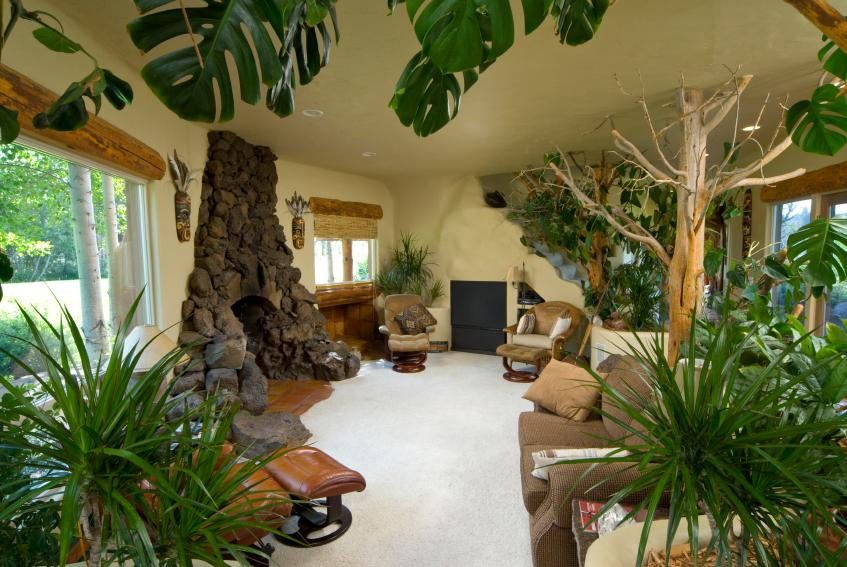 Exotic Living Room Design