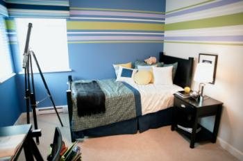 Teenage Boy Bedroom Ideas for Small Room