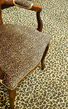 Leopard Print Room Decor Ideas