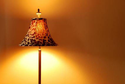 leopard lamp shade