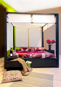 mondern canopy bed