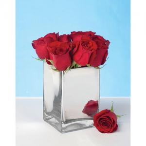 Amazon Silver Mirrored Vase