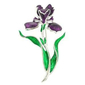 bearded iris pin