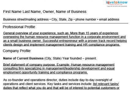 business owner resume template