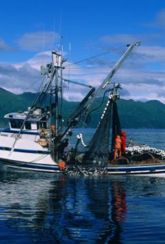 Alaska commercial fishing jobs for Fishing jobs in alaska