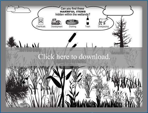 Printable Wetland Search and Find Worksheet