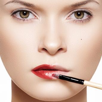 Lip Brush