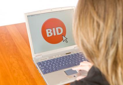 Online Auction Bid