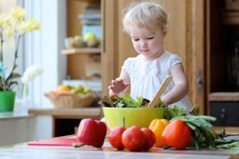 Organic Toddler Foods