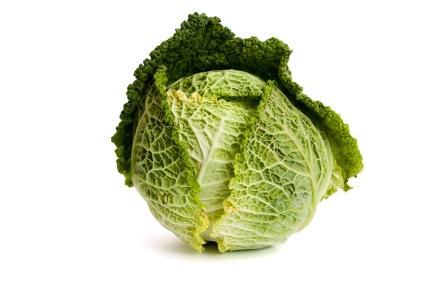 Food irradiation essay