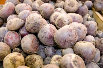 Sugar beets are often genetically modified