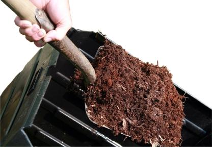 Healthy Organic Soil