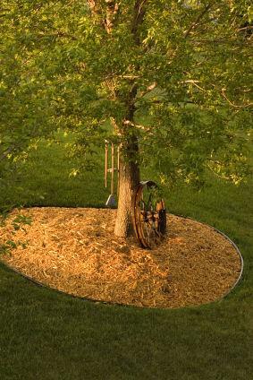 Organic Gardening Mulch