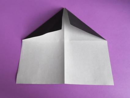 origami panda step 1