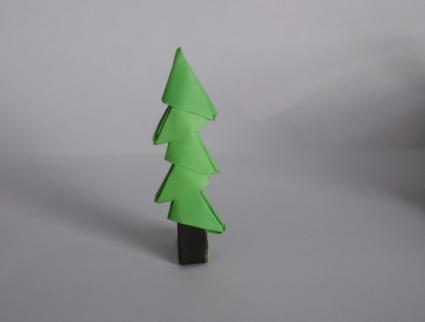 tree step 5