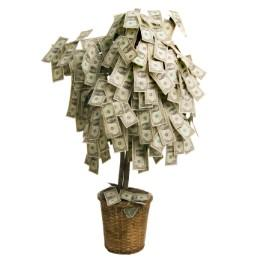 Tree with money on branches