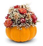 Decorated mini pumpkin