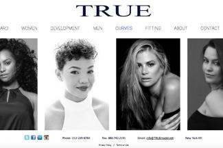 Screenshot of website at Truemodel.net/curves