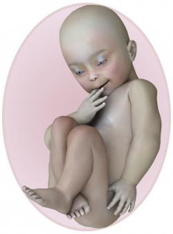 baby at 37 weeks pregnant