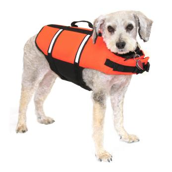 Protection for your dog around water.