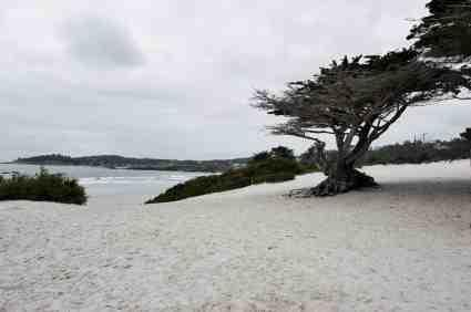 Carmel Beaches