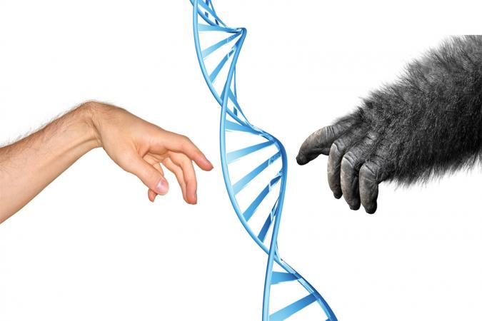 Genetic common ancestry