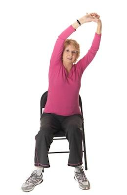 Elder Chair-Elder Chair Manufacturers, Suppliers and Exporters on