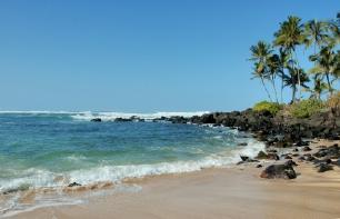 Turtle Beach, Hawaii