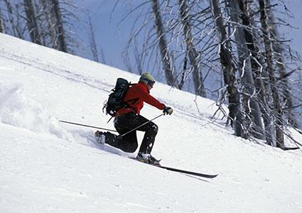 the various types of skiing Alpine / downhill skiing: the most popular kind of skiing, it is usually done at a  resort you ride up the mountain on a lift and then ski down a run the object is to .