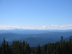 view from Timberline
