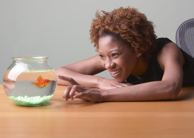woman looking at goldfish in tank.