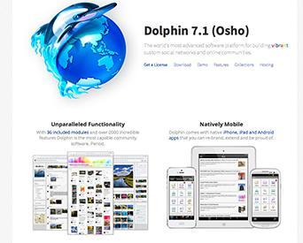 Boonex dolphin dating templates for sale. 3 tipos de articulaciones yahoo dating.