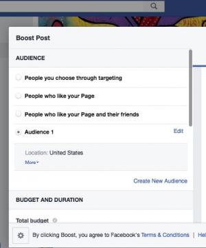 Screenshot of Facebook Boost Post