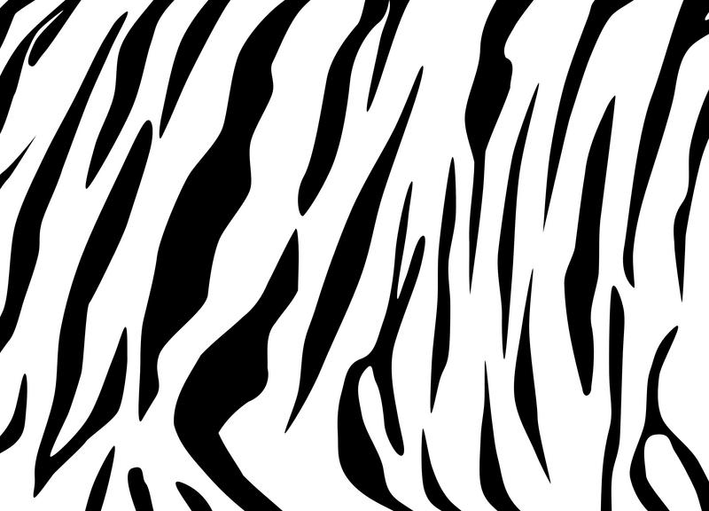 White Tiger Tattoos Slideshow