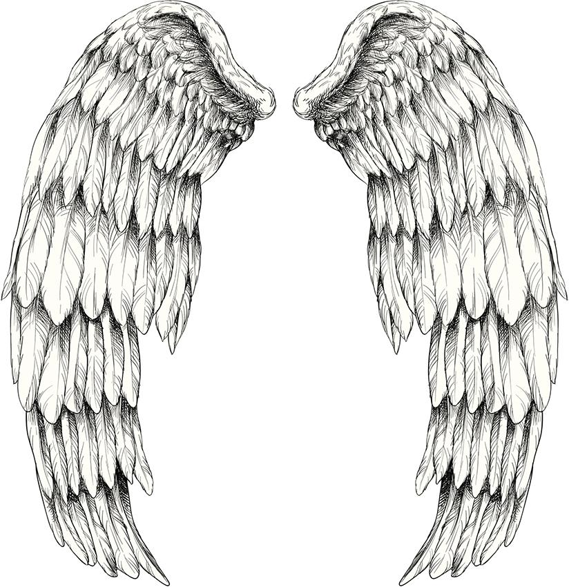 angel wings tattoos design photos slideshow