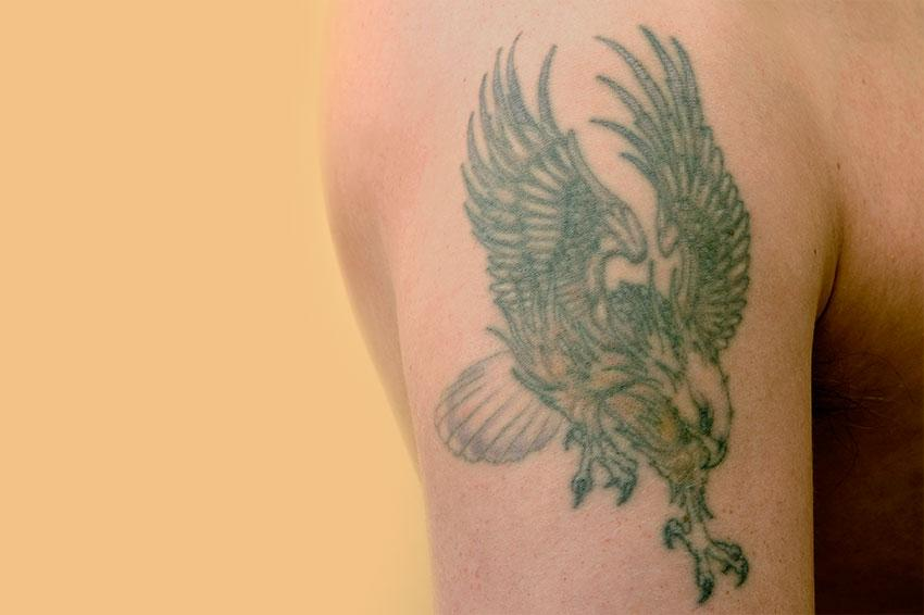 Eagle tattoo gallery slideshow for Eagle tattoo arm