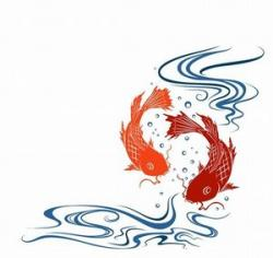 Koi fish tattoos meanings for Koi fish meaning