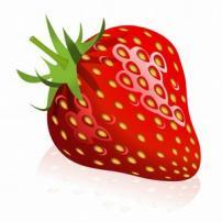 Single perfect berry