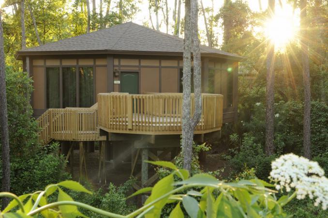 Treehouse Villas at Disney's Saratoga Springs Resort & Spa