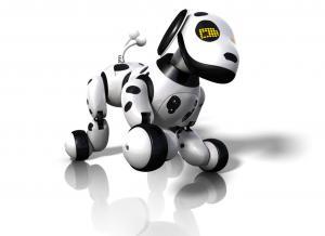Zoomer Robot