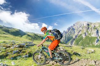 Mountain biker on trail