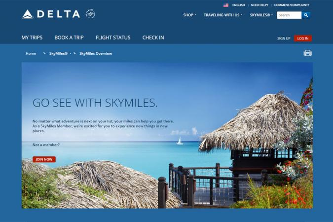 Delta SkyMiles screenshot