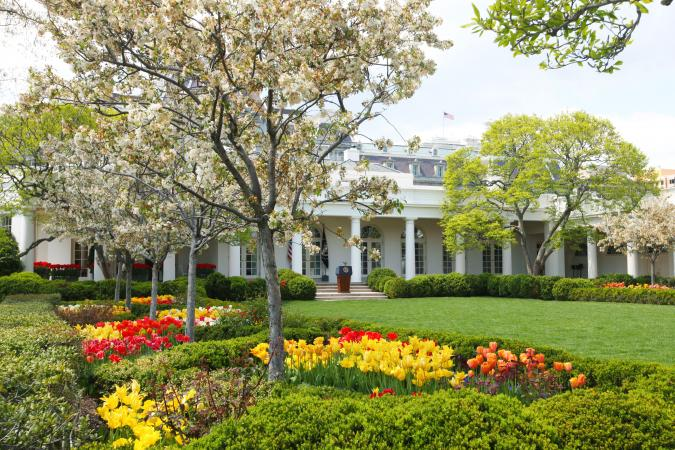 White House Green Lawn