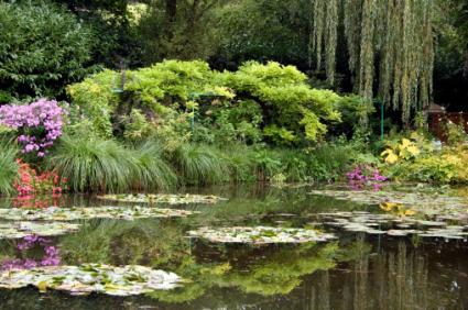 Claude Monet's Lily Pond Giverny
