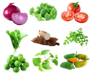 Types of vegetable essay