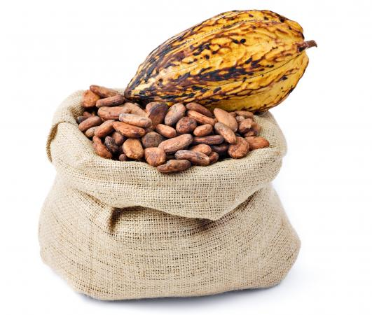 raw cacao and pod
