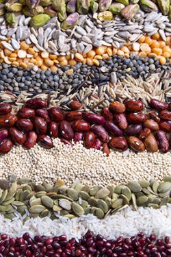 Beans, grains and nuts