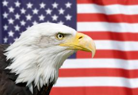 american flag eagle backgrounds