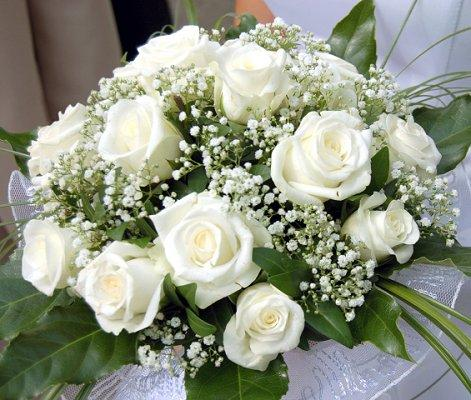 White wedding flowers lovetoknow white wedding flowers junglespirit Choice Image